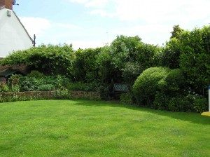 My Garden - Lots of trees and bushes but mostly laid to lawn