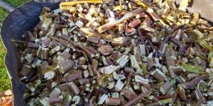Chippings from a Quiet, Crusher Shredder