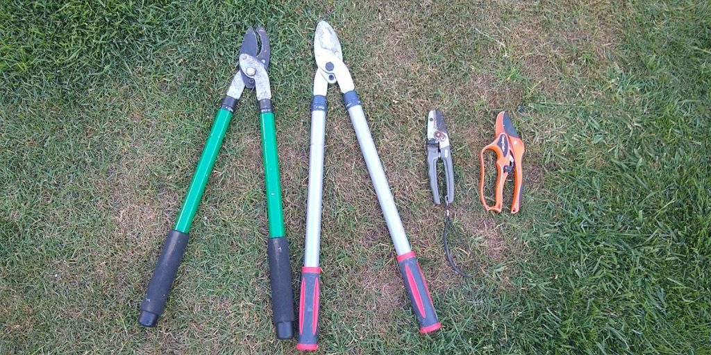 2 bypass cut loppers with 2 anvil cut secateurs. Anvil Vs ByPass Secateurs and Loppers – Why you Should Care